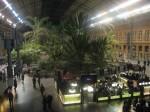 2011nov28-madrid-20h01-estacio-tren-atocha-interior